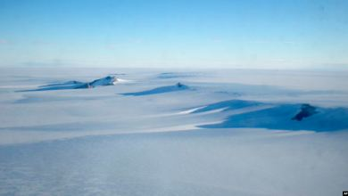 Photo of Desaparece avión militar chileno que iba a la Antártica