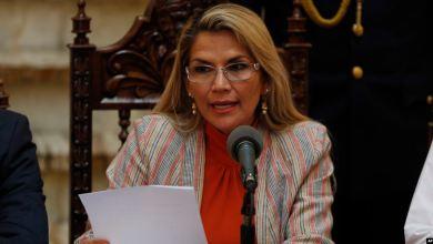 ¿Qué investigó y encontró la OEA en Bolivia? 10