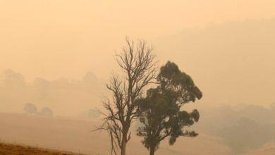 Dos incendios se fusionan en un fuego masivo en Australia 5