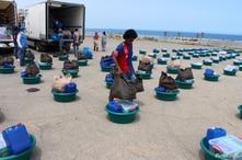 ACNUR: Se reduce el número de refugiados y desplazados que regresa a sus hogares 1