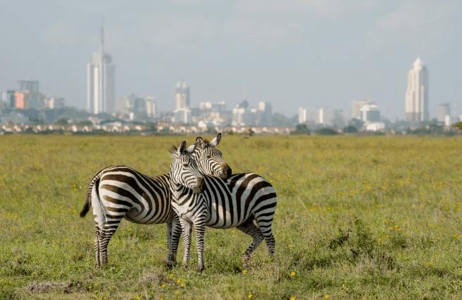 Kenya entra en acuerdo comercial con EE.UU.
