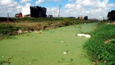 Photo of La AVLB (Asociación de Vecinos de la Boca) adhirió al trabajo de GREENPEACE respecto al RIACHUELO