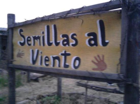 pag.2_semillas