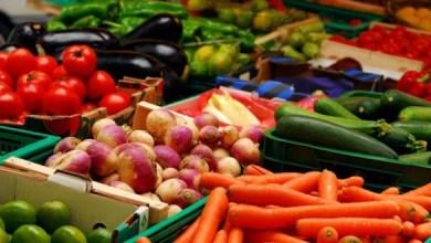 Photo of CAME: El precio de los productos agrícolas se multiplicó por 5,15 veces
