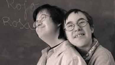 Photo of Inclusión: Sexta conferencia sobre discapacidad en América Latina