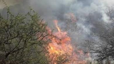 Photo of Sigue activo el incendio forestal en Guasapampa