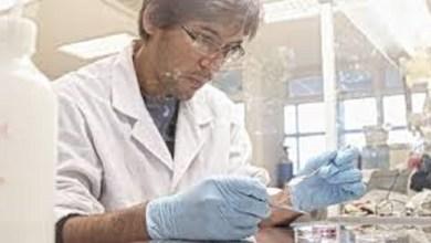 Photo of Tecnología para regenerar la piel