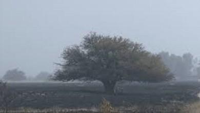 Photo of Focos de incendio en La Pampa