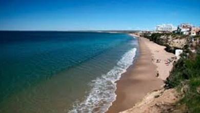 Photo of Turismo en Puerto Madryn