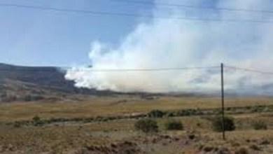 Photo of El incendio que arrasa los bosques nativos