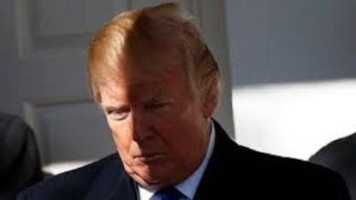 Photo of Trump: «Todo lo que hacen es resistir»