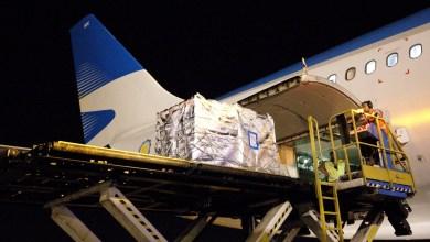 Photo of Se realizó la primera exportación de cerezas a China por avión