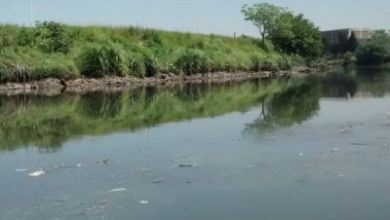 Photo of Horror en Buenos Aires: hallaron el cuerpo de una mujer flotando en el Riachuelo