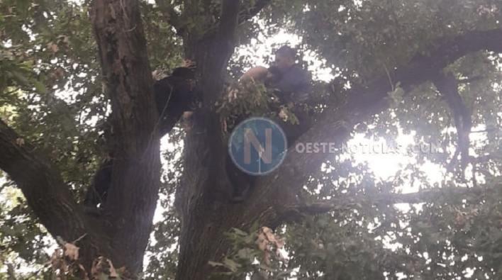 Hurlingham: Intentó suicidarse, dos policías le salvaron la vida