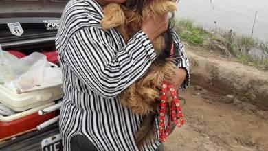 """Photo of Piden justicia por """"Ela"""", la abuela que perdió la vida en el kilómetro 24"""