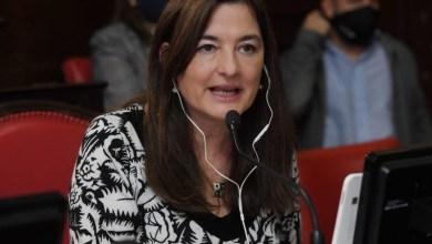 """Photo of Estela Díaz: """"El sistema integrado plantea un nuevo paradigma en el abordaje de las violencias"""""""