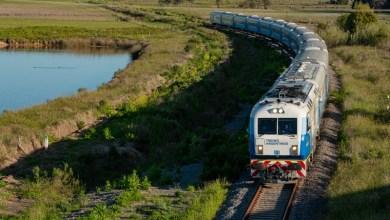 Photo of A partir del 18 de enero el tren a Mar Del Platacontará con tres frecuencias diarias