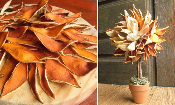 Topiario de cascaras de naranja