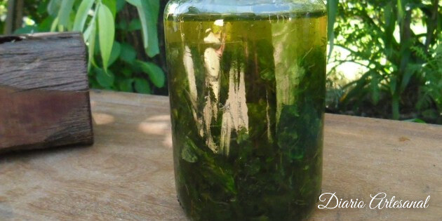 Macerar el aceite artesanal