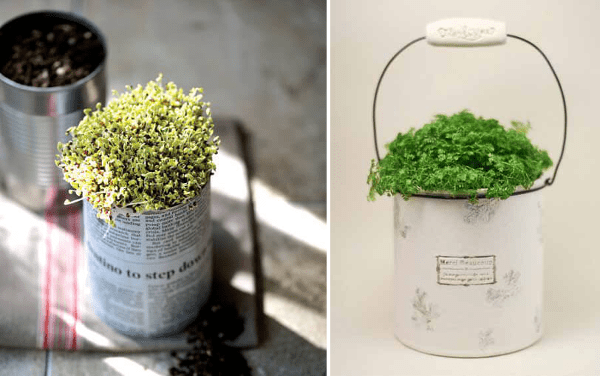 Macetas de latas recicladas
