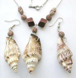 Agujerear conchas de mar
