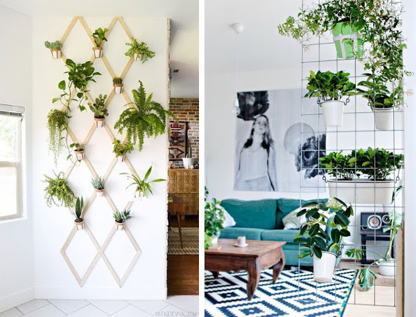 idea para colgar plantas de la pared