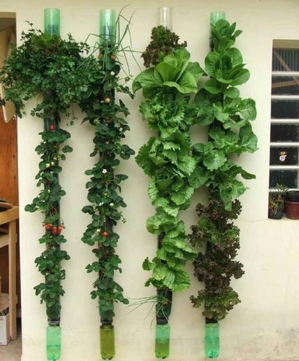 Jardin colgante con reciclaje