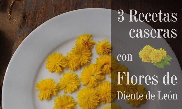 Recetas con flores de diente de leon