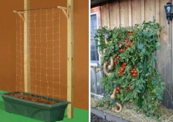 Idea original para la huerta en casa usando una red