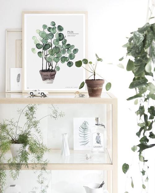 Decoracion con pinturas de plantas