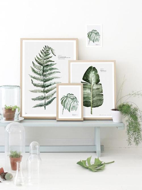 Decorar con pinturas botánicas