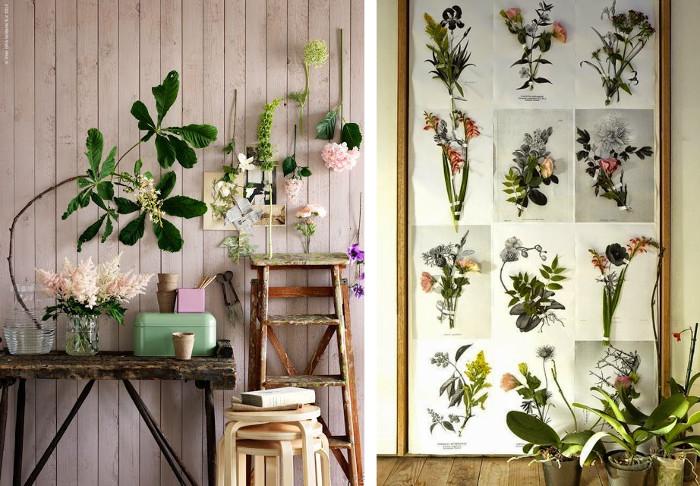 Decorar con plantas y herbarios