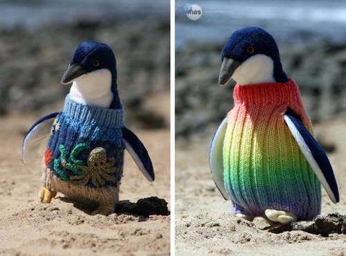 Pinguinos con sueteres