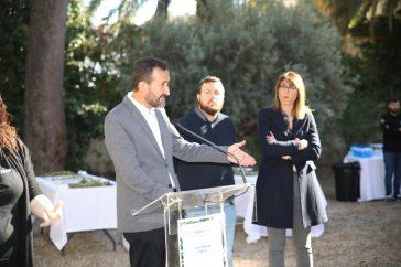 Palmeral Diario de Alicante