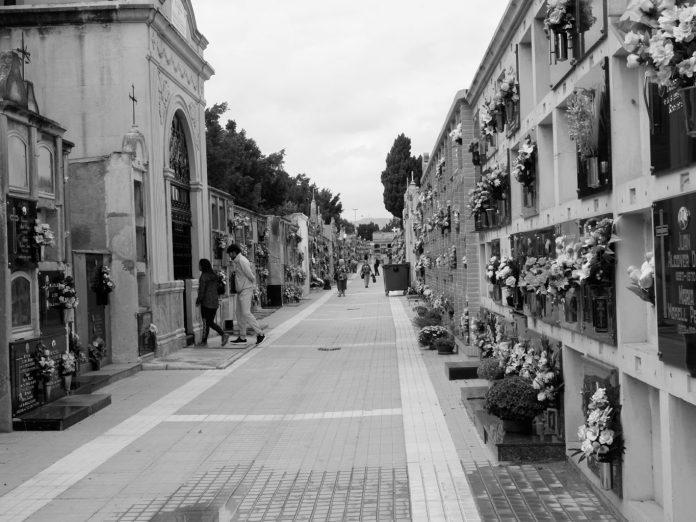 piedra Diario de Alicante