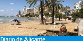La vicealcaldesa de Alicante, Mari Carmen Sánchez, visitando las playas alicantinas afectadas / Ayuntamiento de Alicante