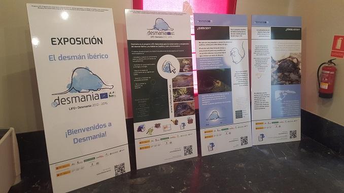 Exposición El Desmán Ibérico