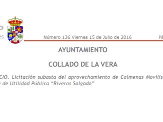 """Colmenas Movilistas del Monte de Utilidad Pública """"Riveros Salgado"""""""