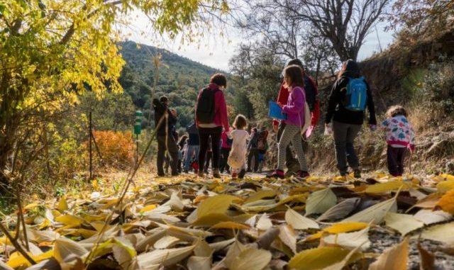 actividades-culturales-turisticas-deportivas-educativas-medioambientales-o-ludicas