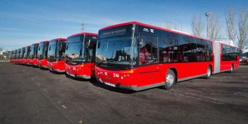 5 jóvenes escupen al conductor de un bus urbano, le insultan y rompen una luna