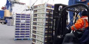 Puerto de Almeria, Fruit Logistics, nuevas rutas,