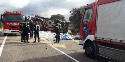 bomberos, carretera, herido, atrapado, cabina, camionero,