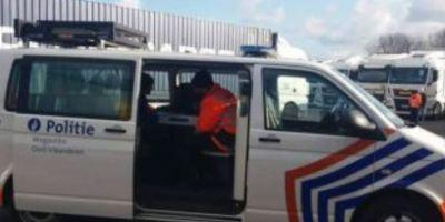 confiscados, 142, camiones, empresa, rumana,.