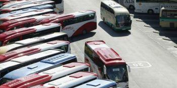 Confebus, modelo, autobús, España, Unión Europea, transporte de viajeros, actualidad,