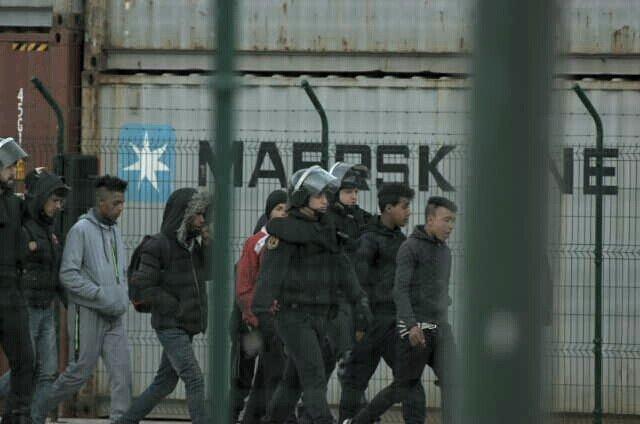 prisión, fianza, inmigrante, puerto, conductor, atropello,
