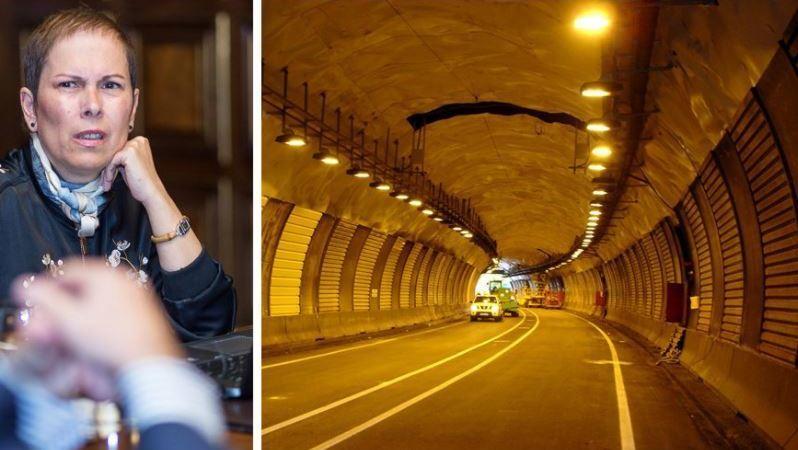 limite, circulación, camiones, N-121, obras, túneles, Belate,. Almándoz,