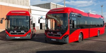 Zaragoza, Avanza Zaragoza, comité de empresa, transporte autobús, laboral, paros convocados, empresa, sociedad,