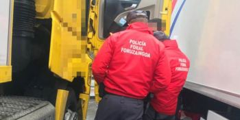 Gobierno de Navarra, formación, policías, especialistas, transporte,