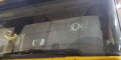 libertad, condicional, camionero, atropelló, chaleco amarillo, Bélgica,