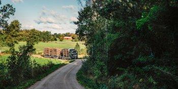 Volvo, madera, transporte, rey, empresas, fabricantes del sector,